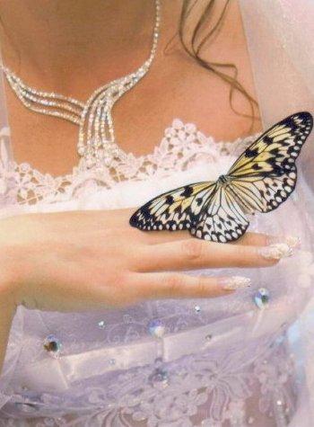 Идеи для свадьбы в Челябинске: живые бабочки