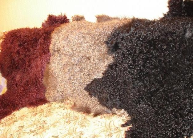 Что такое кожа ламе