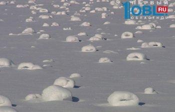 Сначала метеорит, теперь это… Уникальное природное явление – снежные рулоны – в марте зафиксировано в Челябинске
