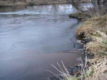 Появление нефтепродуктов в Синеглазово оказалось провокацией