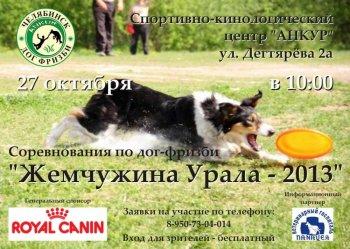 Челябинские любители собак устроили турнир по дог-фризби