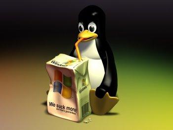 Linux или Windows? Что выбрать?