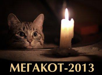 Новогодний подарок для любителей кошек – фотоконкурс от сайта Mega-Cats.ru