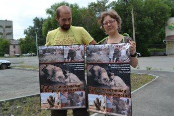 Сотрудники Челябинского государственного цирка нападают на защитников животных