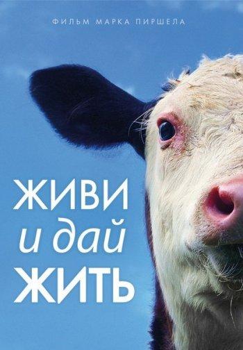 Жителям Челябинска предлагают узнать, почему все больше людей в мире становятся веганами
