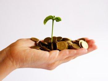 Продукт для стартапов разрабатывает банк «Народный кредит»
