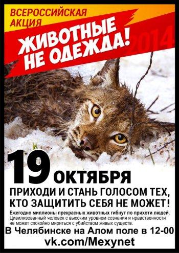 Жители Челябинска отказываются от покупки одежды из животного меха и кожи