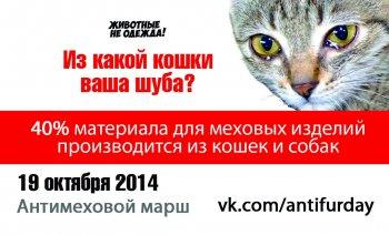Администрация города согласовала проведение акции «Животные – не одежда!» в Челябинске