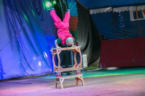 В Челябинск приехал гуманный цирк – цирк без животных