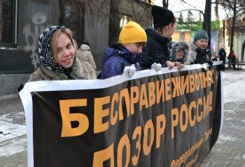 Более 1000 обращений отправилось Путину с просьбой принять в России Закон «О защите животных от жестокости»