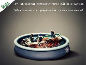 Жители Челябинска выступят в защиту дельфинов и морских млекопитающих