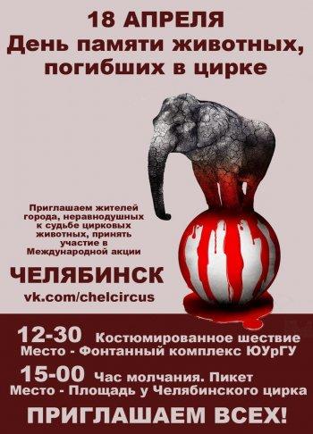 Челябинск впервые присоединяется к Международному Дню памяти погибших в цирке животных