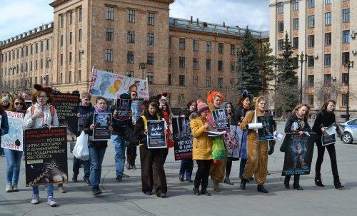 За Челябинский цирк без животных!