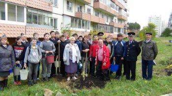 В память о Герое России из Челябинской области высадили аллею