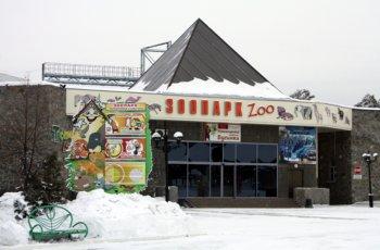 Неудобная правда об ужасах Челябинского зоопарка всплыла наружу