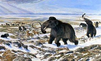 В челябинской библиотеке Пушкина наступил Ледниковый период
