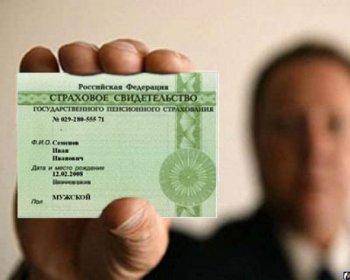 Жителей Челябинской области предупреждают, что при запросе сведений из реестра прав могут попросить указать СНИЛС