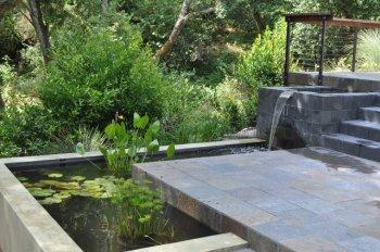 Пруд с рыбками во дворе коттеджа: новый тренд в ландшафтном дизайне