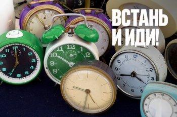 Жаворонки vs совы: Предприниматели Урала предпочитают вести бизнес после обеда